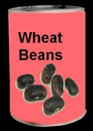The Wheat Beans